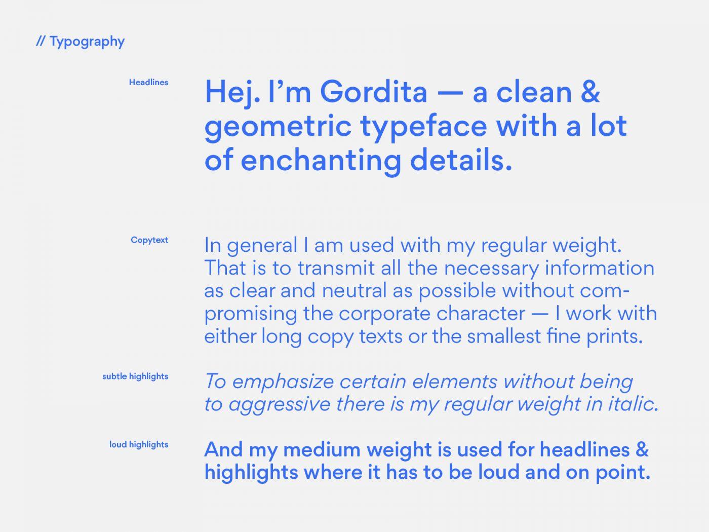 flynex-typo-design-gestaltung-typographie-produktdesign